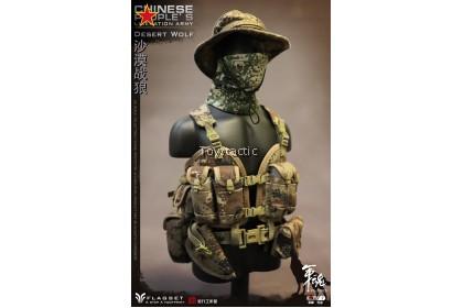 Flagset FS73025 - 1/6 Chinese PLA Desert Wolf
