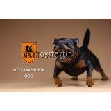 MR.Z Rottweiler - version 2